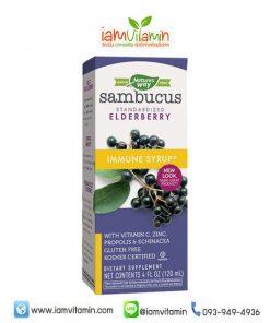 Nature's Way Sambucus Immune Syrup 120ml